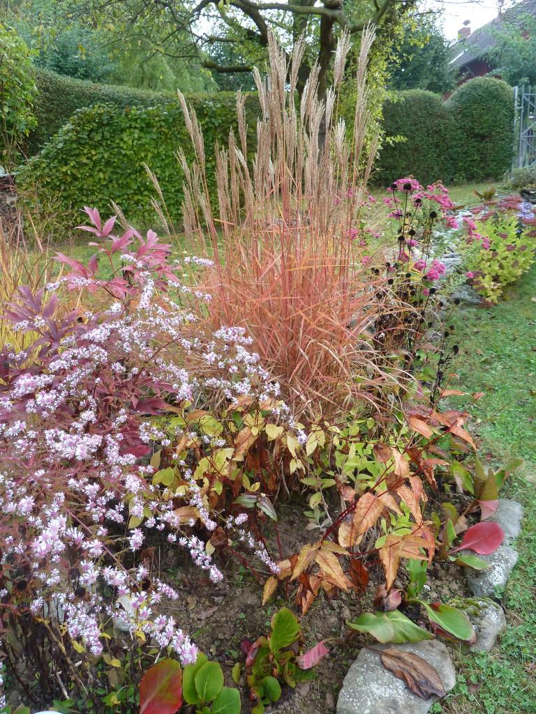 wunderschöne Oktober- Farben