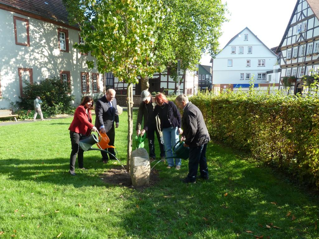 In 2015 wurde unser Jubiläumsbaum gepflanzt
