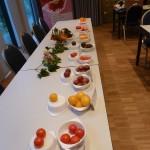 Bunte Tomaten-Vielfalt mit Cocktail- Cherry, Roma und Stabtomaten